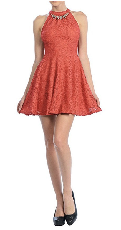 Auliné Collection Womens Halter Sleeveless Floral Lace Skater Dress. Women's Fashion
