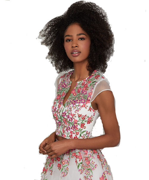 BCBG Embroidered Floral Cropped Top Image